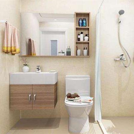 整體衛浴5